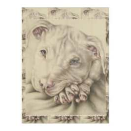 http://www.zazzle.com/drawing_of_a_white_pitbull_on_blanket-256169612973875642