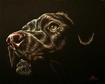 https://www.etsy.com/listing/234368205/dog-poster-dog-art-dog-print-black-dog?ref=shop_home_active_21