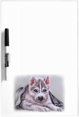 http://www.zazzle.com/siberian_husky_puppy_with_blanket_drawing_dryeraseboard-256435827522015733