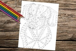 https://www.etsy.com/listing/266620948/dachshund-dog-coloring-book-page-adult?ref=shop_home_active_2
