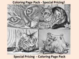 https://www.etsy.com/listing/259035201/kitty-cat-combo-coloring-pages-4-pages?ref=shop_home_active_5