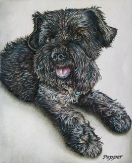 """Pepper"" Colored Pencil on Paper, 8""x10"", SOLD"