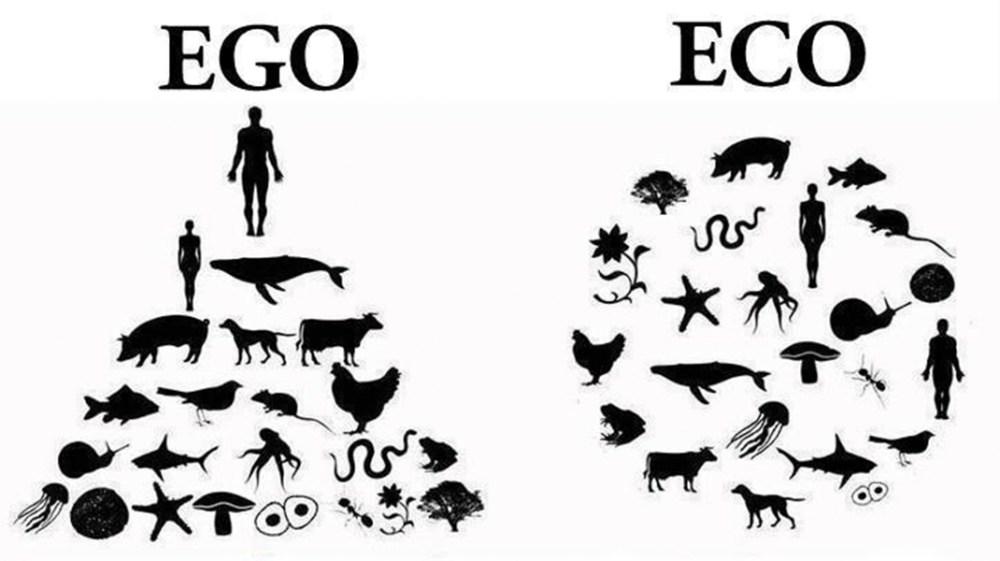 ego_eco