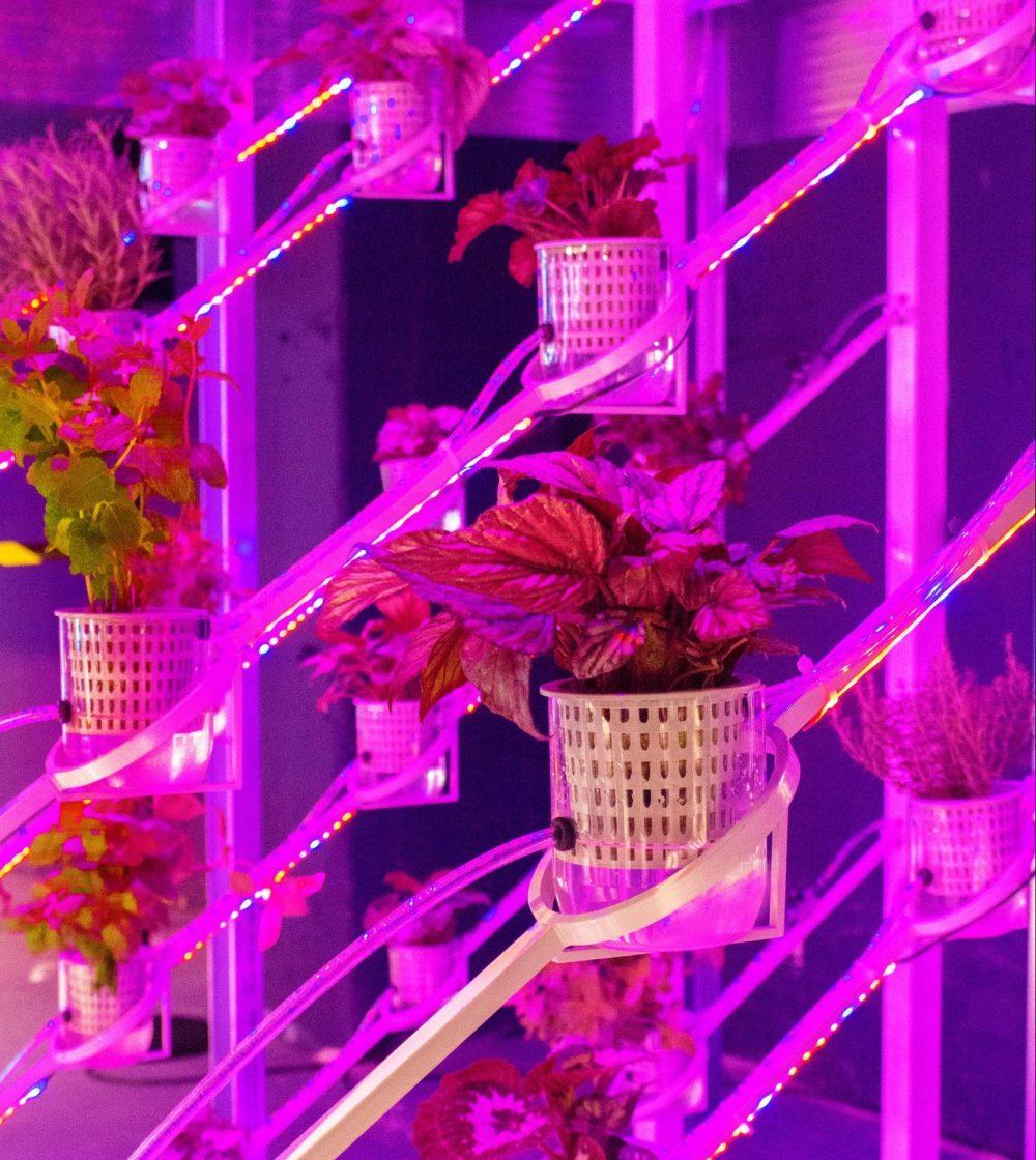 power-plant-greenhouse-design_dezeen_2364_col_8-1704x2556