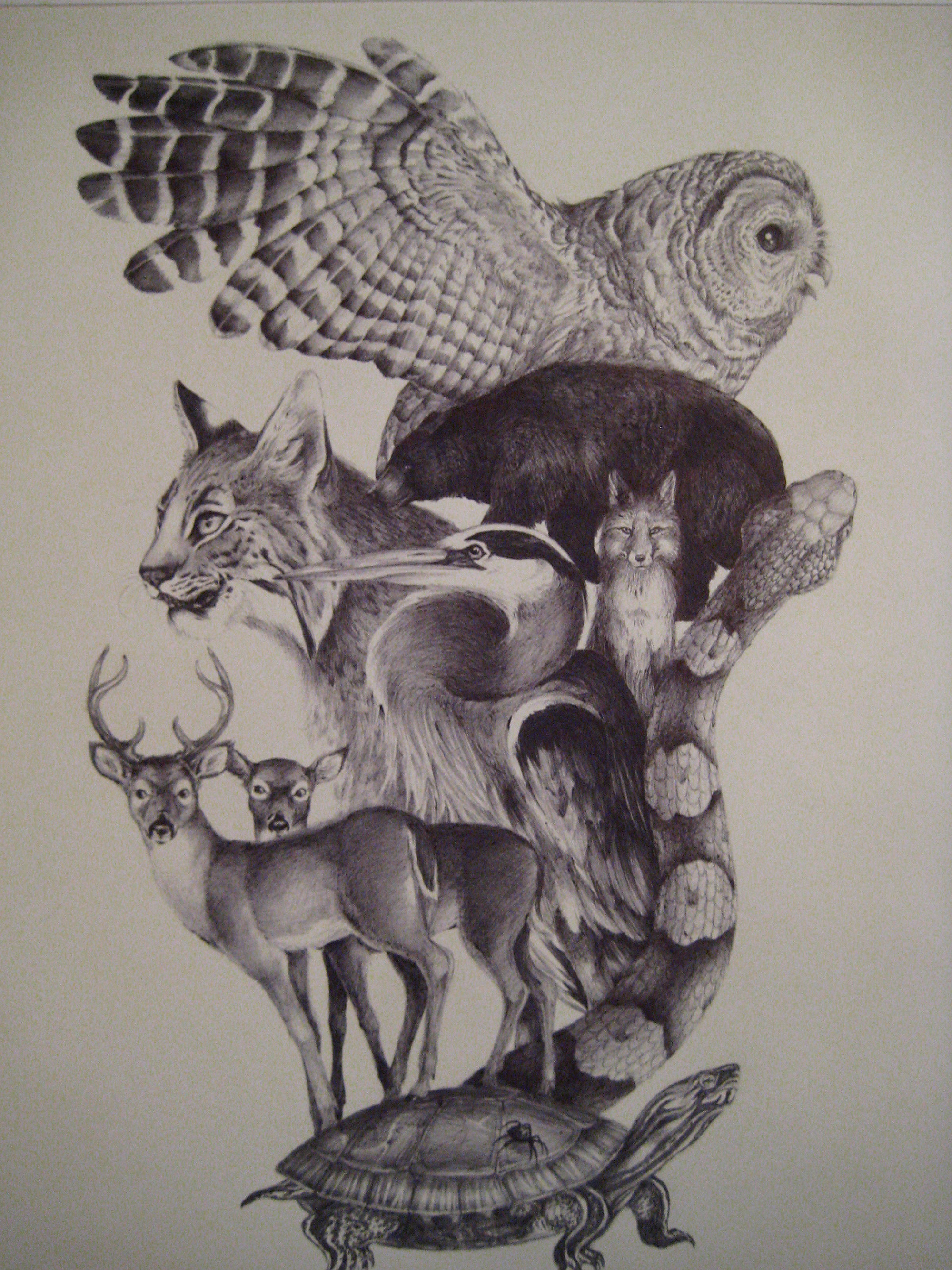 Pole Animal Totem Drawings