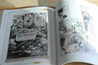 Plansze do Sandmana - Charles Vess, John Ridgeway.