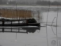 dock_DSCN1023p