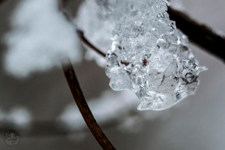 ice_0166p