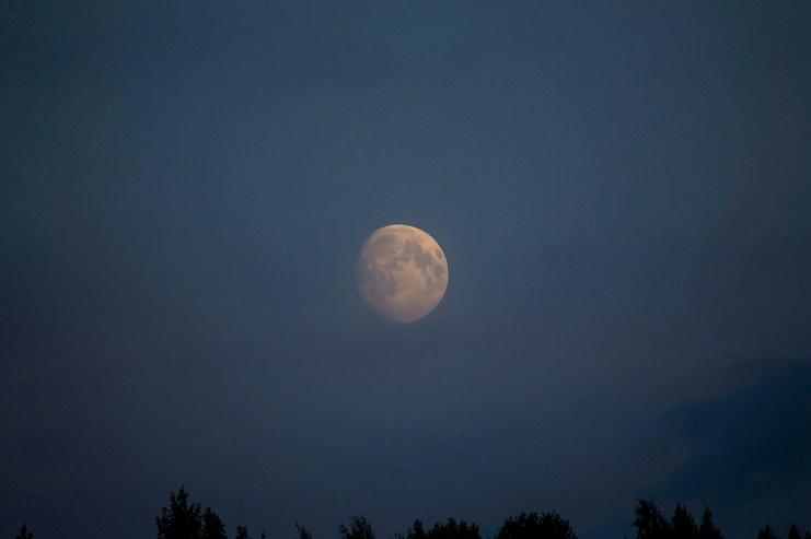 moon_0128p
