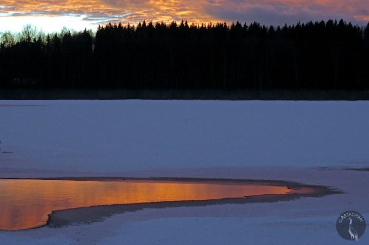 sunset9346p