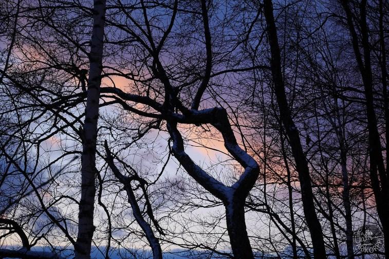 sunset_P1030439p