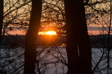 sunrise_0115p