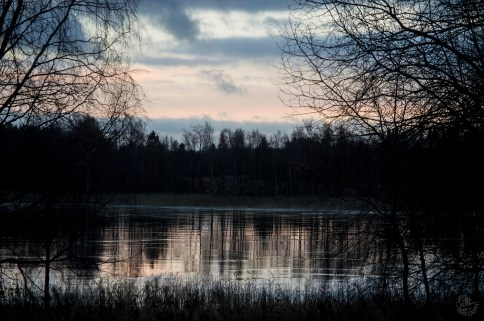 reflections_0050p