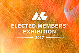ALRI Elected Members' Exhibition 2017