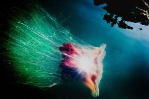 "Susan Lapides ""Rocket"""