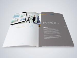 Rapport_activite-01-e