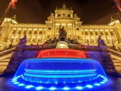 Národní muzeum nabízí vkvětnu 2019 plejtváka a volné vstupenky