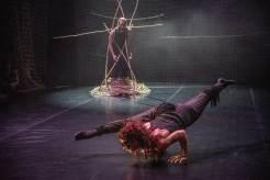 Představení Panthera je první podzimní novinkou souboru současného tance 420people v roce 2019. foto© Petr Šálek