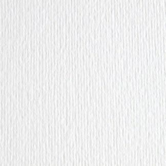 Картон цветной для пастели Elle Erre 00 bianco А3 (29,7х42 см) 220 г/м.кв. Fabriano Италия