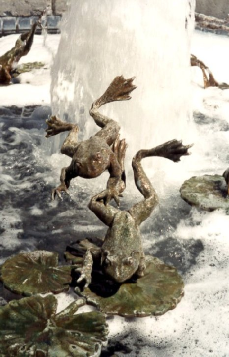 R. Clopton - Napa Fountain
