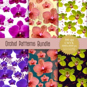 Seamless Orchids Patterns