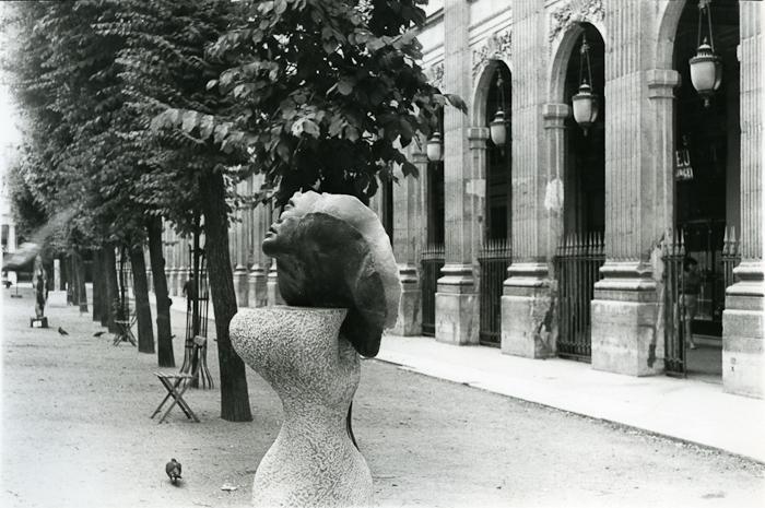 muzeum sztuki nowoczesnej