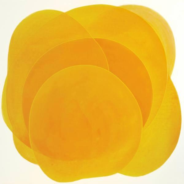 Yellow Flower by Jitka Anlaufova
