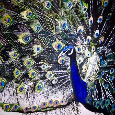 Original Animal Painting by Marco Menato | Expressionism Art on Canvas | Cauda Pavonis