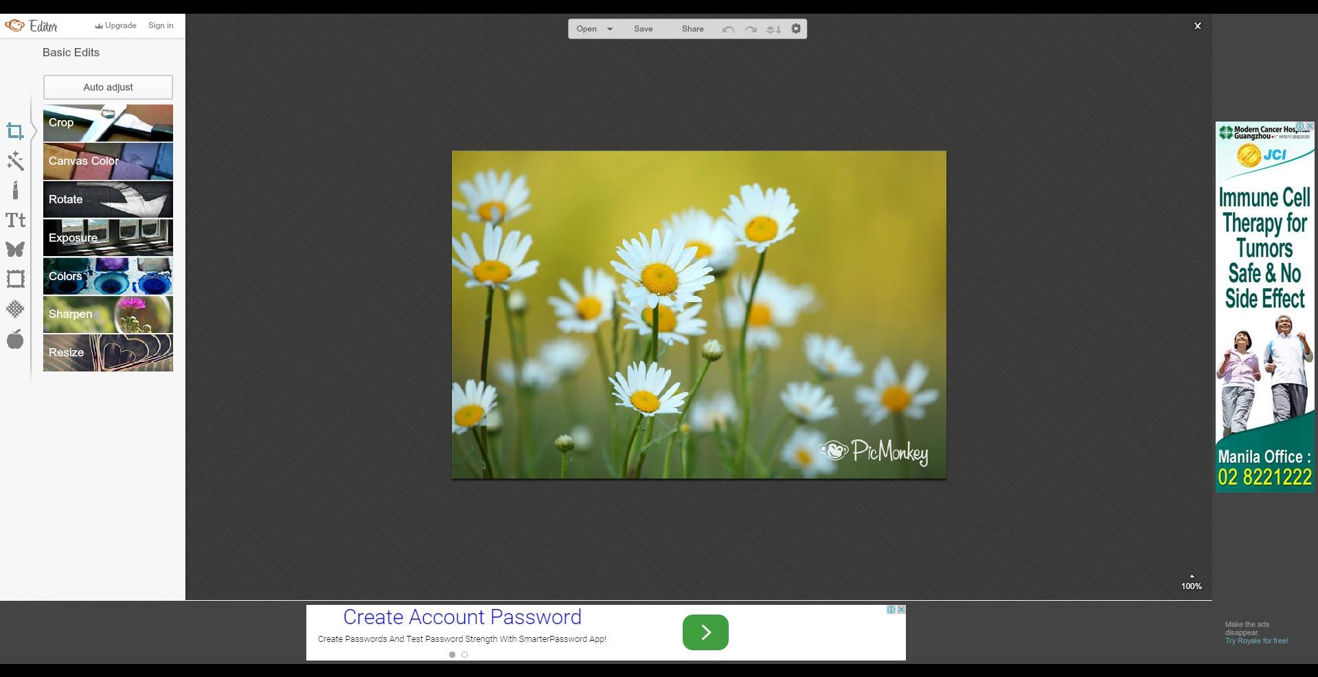 Photo editor | PicMonkey: Free Online Photo Editing