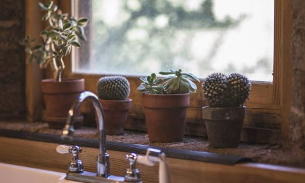 4 Things You Don't Think About When Cleaning Your Home