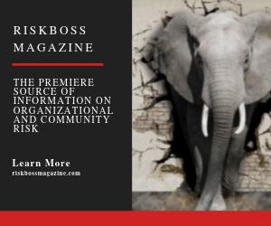 Riskboss Magazine Ad