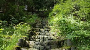 stairs-2340964_1920
