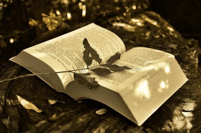 book-2855857_1920