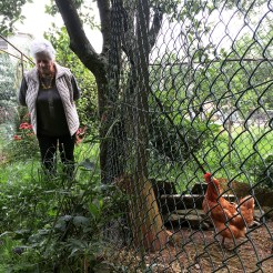 Emilia and Her Hen