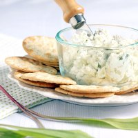 Wild Ramp Goat Cheese Spread (with Ramp Alternative)