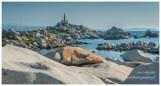 Archipelag La Maddalena, Sardynia