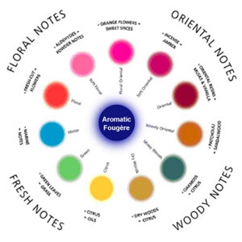 fragrance_wheel