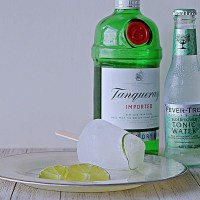 Boozey Popsicles for Grown-ups : Gin & Tonic