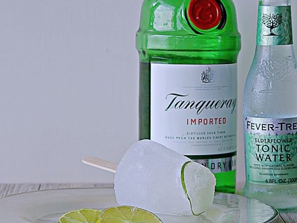 boozy popsicles gin and tonic