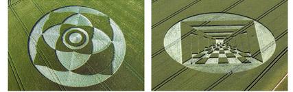 cropcircles2.jpg