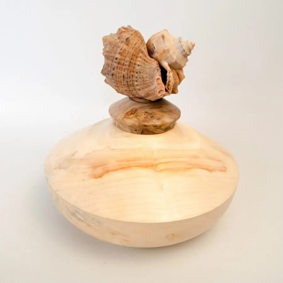A maple lidded box woodturning with a sea shell lid.