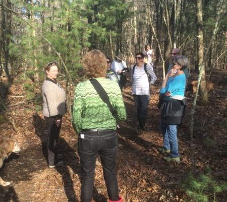 Artists Attended Guided Site Walks