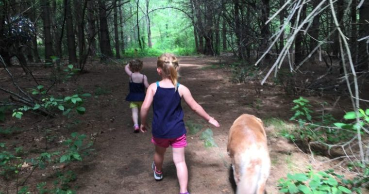 Finding Joy: Visiting Art on the Trails With Children