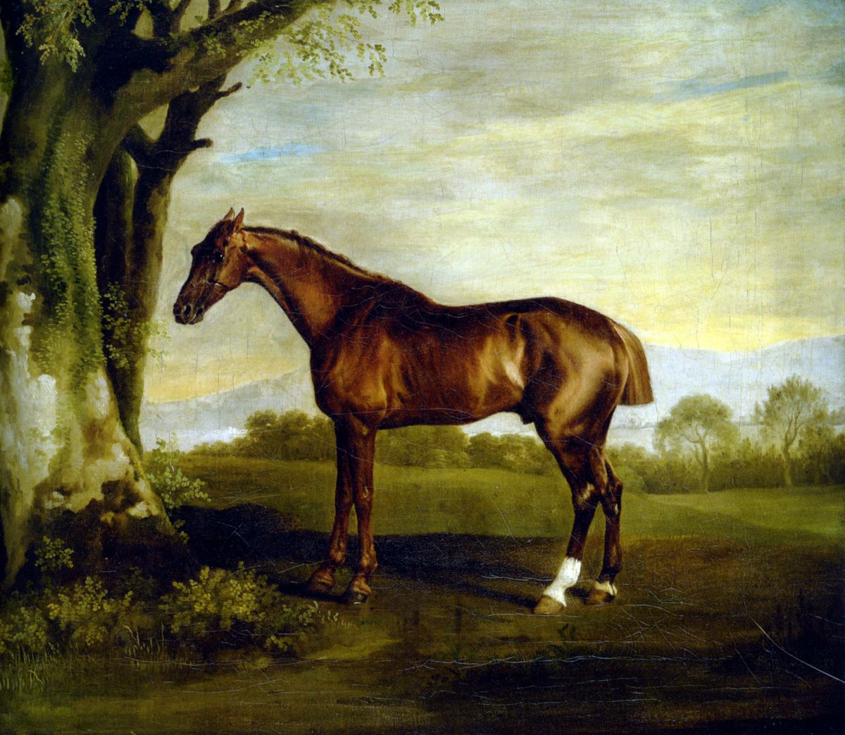 A Chestnut Racehorse by George Stubbs