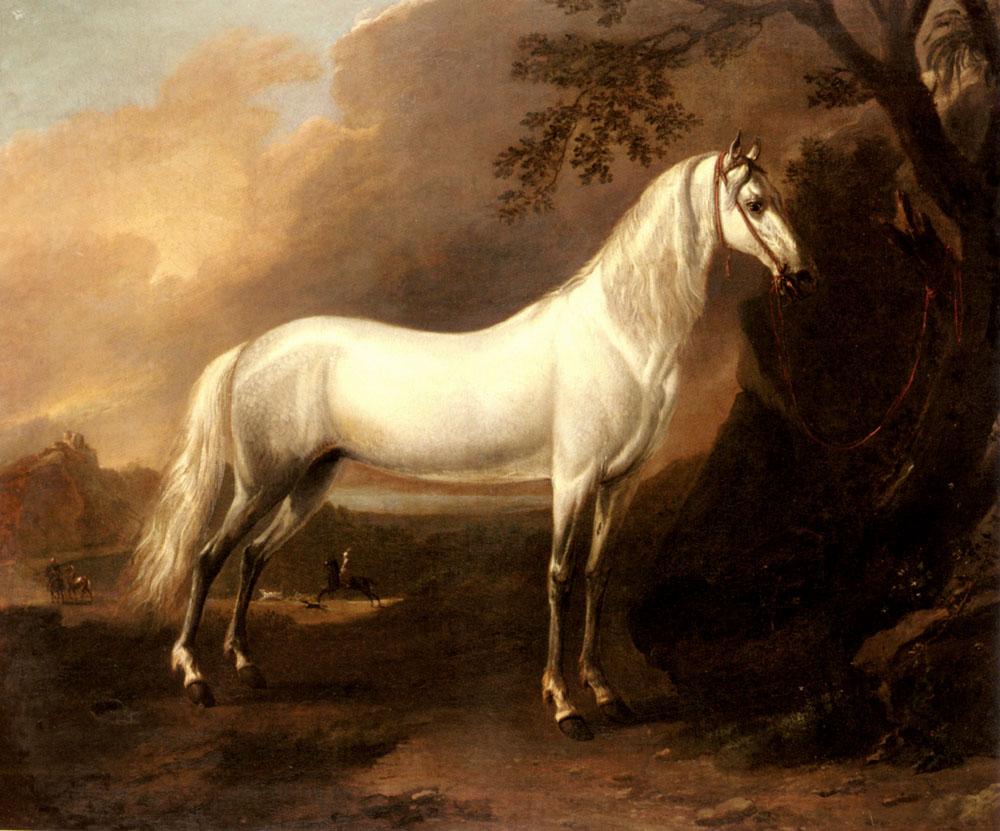 A Grey Arab Stallion In A Landscape by Jan Wyck