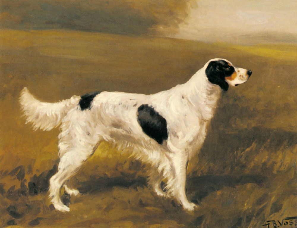 A Setter by Franklin Brook Voss
