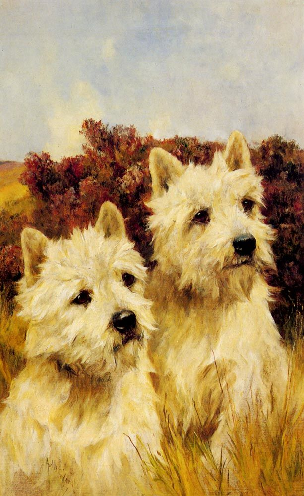 Jacque and Jean Champion Westhighland White Terriers by Arthur Wardle