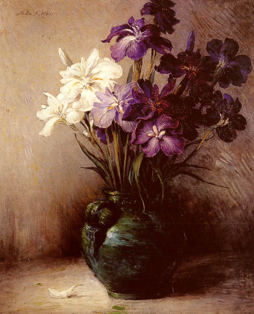 Japanese Iris Six Varieties by John Ferguson Weir