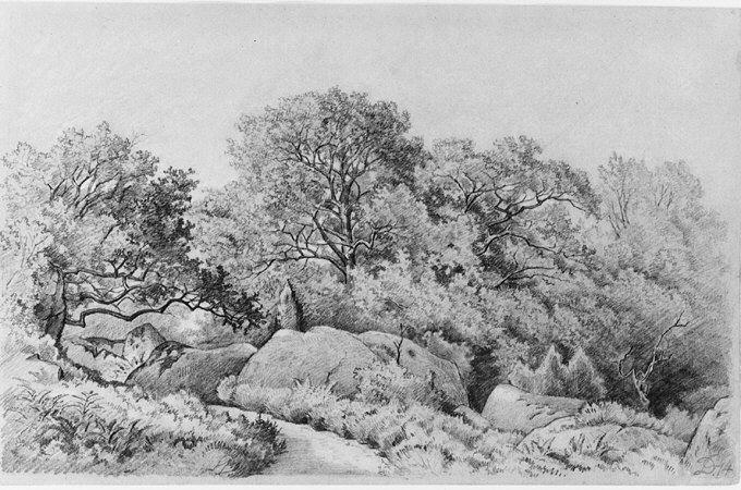 Landscape by David Johnson