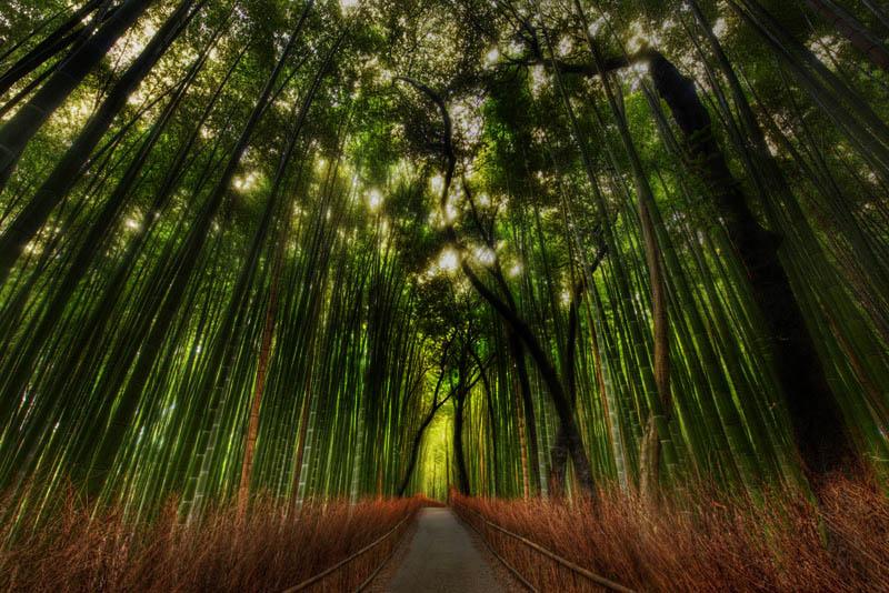 arashiyama-kyoto